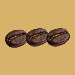 Corsé (3 grains)